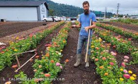 Create a fertile garden